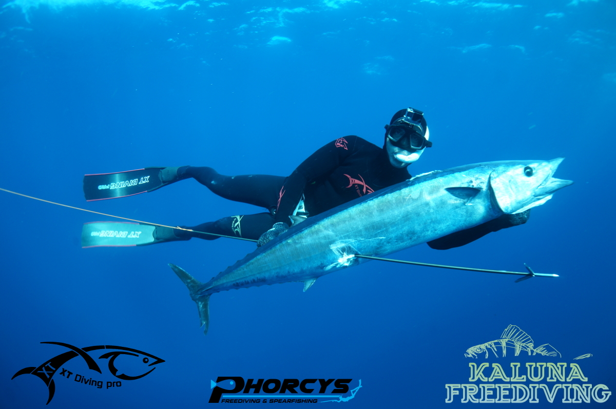 Cape Verde – Spearfishing – August Trip 1